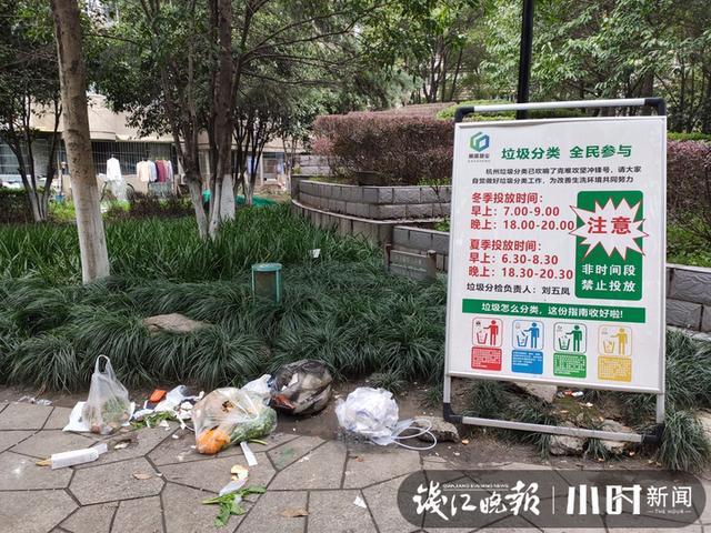 小区垃圾分类.jpg